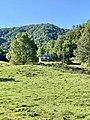 North Carolina State Highway 209, Spring Creek, NC (50528590896).jpg