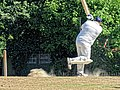 Nuthurst CC v. Henfield CC at Mannings Heath, West Sussex, England 060.jpg
