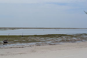 Nyali Beach from the Reef Hotel during low tide in Mombasa, Kenya 4.jpg