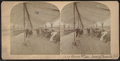Ocean Pier, Long Branch, N.J, from Robert N. Dennis collection of stereoscopic views 2.png