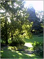 October University Freiburg Plaza - Master Botany Photography 2013 - panoramio.jpg
