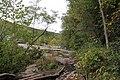 Ohiopyle State Park River Trail - panoramio (50).jpg