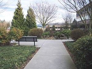 Photo of Microsoft's RedWest campus.