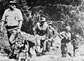 Oostenrijks leger let op terroristen, Bestanddeelnr 920-5119.jpg
