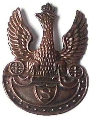"""Riflemen's Association - Badge of the Riflemen's Association """"Strzelec"""""""