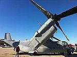 Osprey (6339022844).jpg