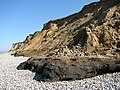 Outcrop of the West Runton Freshwater Bed - geograph.org.uk - 794799.jpg