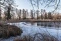 Pörtschach Halbinselpromenade Uferzone mit Schilfrohr und Eis 11012017 6029.jpg