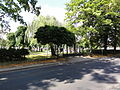 POL Bielsko-Biała Stare Bielsko Cmentarz EA 1.JPG