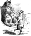 Page 129 illustration to Three hundred Aesop's fables (Townshend).png