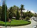Palma Mallorca 2008 71.JPG