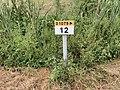 Panneau E53c PK 12 Route D1079 Route Bourg St Cyr Menthon 1.jpg