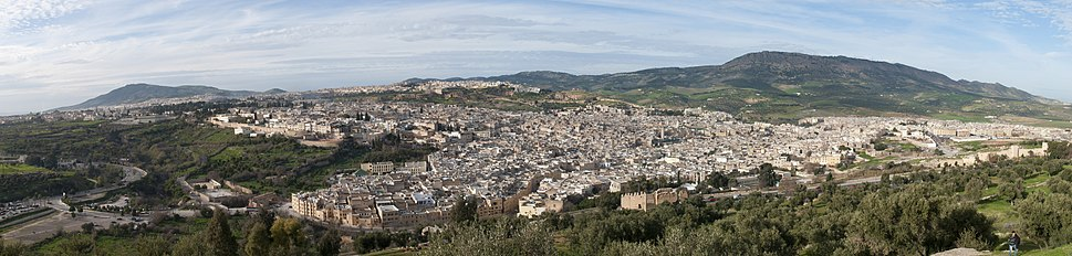 Panoramic view of the Old Medina