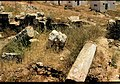 Panorama shilo 08.jpg