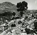 Paolo Monti - Servizio fotografico (Selçuk, 1962) - BEIC 6362076.jpg
