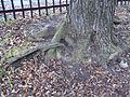 Parc de la Ferme-Brodie 073.JPG