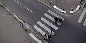 Zebra crossing - A zebra crossing in Paris, France