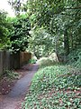 Path below the railway embankment - geograph.org.uk - 1470279.jpg