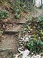 Path from Burg Scharfenstein to Kiedrich. - panoramio.jpg
