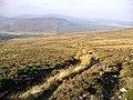 Path from Carn Ban Mor - geograph.org.uk - 268015.jpg