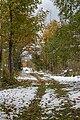 Path from Skalnate pleso to Tatranska Lomnica, High Tatras, Slovakia.jpg
