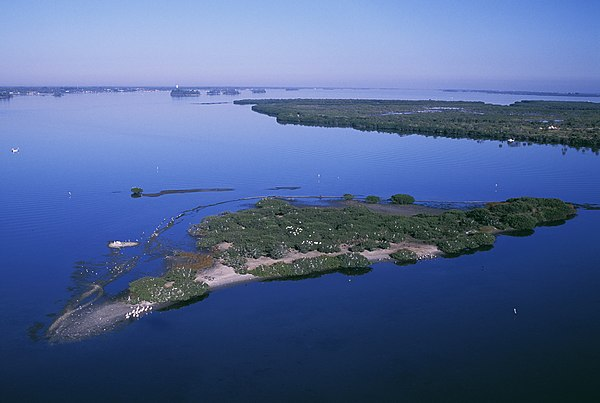 Pelican Island in Florida was the nation's first wildlife refuge, created in 1903. PelicanIslandNWR.jpg