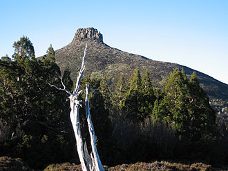 Mount Pelion East - Image: Pelion East tree foreground
