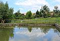 Petkovy, small pond.jpg