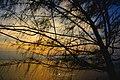 Petra 010 - panoramio.jpg
