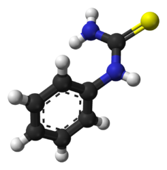 Phenylthiourea-from-xtal-3D-balls.png