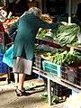 Picking vegetables (296628736).jpg