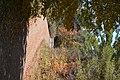 Piercefield, NY, USA - panoramio (52).jpg