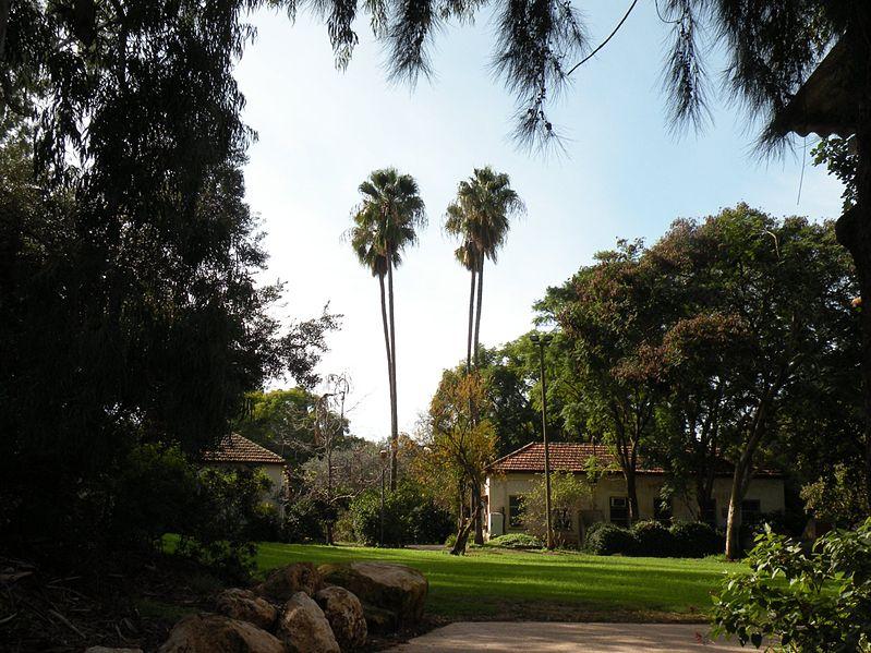 גן-שמואל-החצר הגדולה 2009