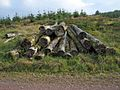 Pile of logs by the West Aquaduct (sic) Road - geograph.org.uk - 263509.jpg