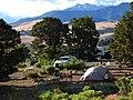 Pinon Flats Campground (24575878359).jpg