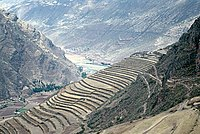 Incan Agriculture Wikipedia
