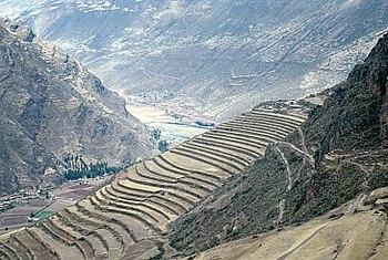 Agricultura incaica wikipedia la enciclopedia libre for Donde queda terrazas