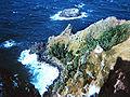 Pitcairn Island.jpg