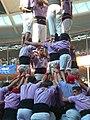 Plaça de Braus de Tarragona - Concurs 2012 P1410430.jpg