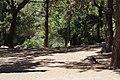 Plaka - panoramio (2).jpg