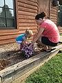 Planting a pollinator garden (21473066793).jpg
