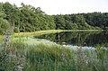 Ploughlands Pond - geograph.org.uk - 239725.jpg