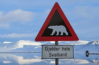 A polar bear crossing sign