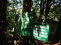 Pookode Lake - Entry area snap 0099.JPG