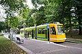 Portland Streetcar (Park Blocks).jpg