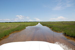 Portsmouth, North Carolina - View from a truck driving on Portsmouth Flats Road separating Portsmouth from the rest of the North Core Banks. The road is usually covered in water.
