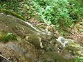 Povlen - Srednji Povlen - reka Cetina - Vodopad u gornjem toku 1.jpg