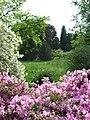 Průhonice, zámecký park, kvetoucí keře a stromy.jpg