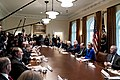 President Trump meets with the Coronavirus Task Force (49614347366).jpg