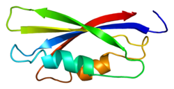 Protein EEF1B2 PDB 1b64.png